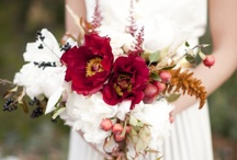 Oh Happy Day! / Inspiration for our November 2013 wedding in Asheville, NC.