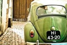 Green..my passion!!