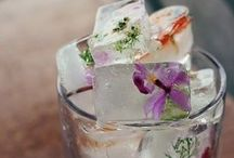 Cocktails / Cocktails & Libations