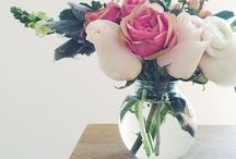 Blooms & Flowers / Personal Floral Design & Inspiration