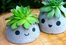 Garden / Inspirasjon og tips til finere hage