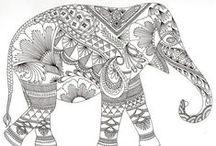 Animal Designs / Stress Relieving Animal Designs