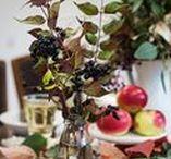Fall table & fall baby party decoration / Herbstliche Tischekoration in Rot-Tönen! Ganz  Rot kommt der Herbsttisch daher. Mit schönen Deko-Ideen und Rezepten verschönern wir den bunten Herbst noch ein bisschen...