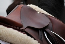 HN Staff's Stuff We Love! / Top Picks by our Editors and Contributors of horse equipment, apparel, and tack. Some of it we own and love, and some we would love to have!  / by Horse Nation