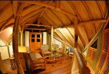 Our Facilities / These tastefully designed wooden cottages in a beautiful and natural forest setting really unwinds the mind, body and soul of holiday makers and eco-tourists. Close to nature are the words you would describe this accommodation besides great hospitality. Overall the ambiance is all Green and Relaxing…