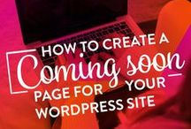 Wordpress Tips / Starting a blog or new website with WordPress? Check out these tips, tutorials, and resources for getting started, customizing, and running your wordpress site like a pro!