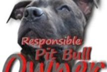 Pretty Pits / pit bulls and other animals I love / by Amber Maul