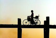 Cycle / by Asuka Hisa