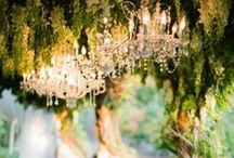 Wedding bliss / Love  / by Teal Johnson