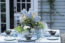 sweet blue cottage / wild blueberries for the picking at this lovely cottage in the north, where the bay is a clear blue and the sky matches the mood, calm blue everywhere you look…. / by Deanna