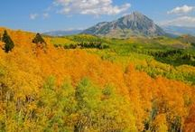 Fall Foliage / Home to largest Aspen grove in Colorado (Kebler Pass), the golden leaves in this area will leave you in awe.