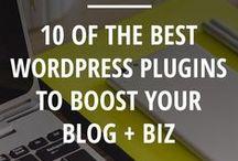WordPress | Tips and Tricks / Wordpress tutorials and tricks