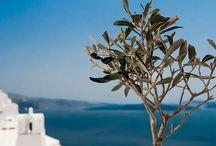 Aegean blue / Greece, island , sea, architecture, culture