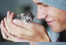 Aww, cute / Cute and funny kittens, puppies, cats, dogs, and baby animals