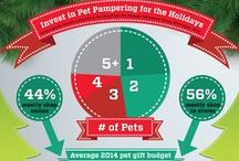 Graphic Design: Infographic Design for the Pet Industry / One aspect of graphic design is infographic design. Infographics are helpful to communicate statistics with greater visual impact - often, brands invest more heavily in infographics than entrepreneurs. Contact mellie @ mellierose.com to inquire about commissioning your own incredible infographics - especially if you work with the pet industry!   PORTFOLIO: http://magicwithmellie.com   mellie@magicwithmellie.com | (814) 791-5683