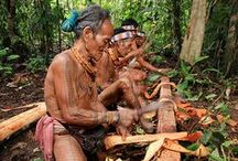 Explore Indonesia / Indonesian people, culture, tradition, food, place and Indonesian endemic animals