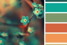 colore!
