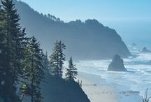 Oregon Coast / A stay on the Oregon Coast will be one of the most scenic and memorable vacations you will EVER have! Let Bella Beach help you plan your perfect coastal stay! https://goo.gl/tf9mzP 866-994-7026