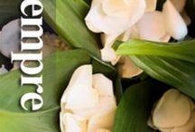 Blugardeniaeventi Wedding planner reggio calabria / Wedding planner