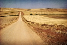 places / by erika stander