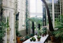Conservatories and Misc Architecture