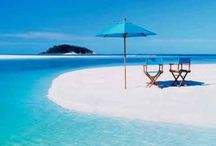 Beaches & Coral Reefs / Beautiful beaches and coral reefs from around the world.