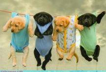#SOS cuteness