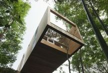 A Tree House for Adults / by Martin Salzmann
