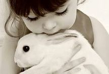 """Life with Pets / """"Happiness always looks small while you hold it in your hands, but let it go, and you learn at once how big and precious it is."""" ~ Maxim Gorky / by Christina Lorimer"""