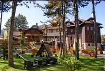 Places to Visit / Zlatibor