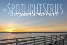 Spotlight Series / Featuring some of our favorite places around Martha's Vineyard
