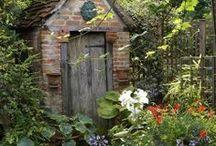 Garden Ideas & Planting / by Ron Thibodeaux