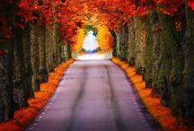 Many Roads less Traveled!!! / Spectacular trails....
