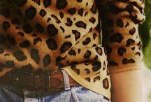 Leopard everywhere