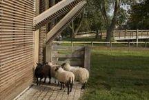modern barns / rethinking the barn