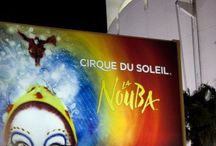 Cirque to see!!! / My overwhelming love for the performers and origination of CIRQUE DU SOLEIL!!
