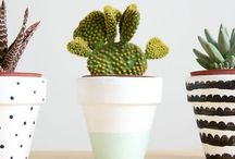 DIY plants