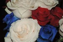 The Bouqs (Red, White, and Blue Roses!)