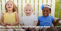 Transracial Adoption / Information and resources for transracial and multicultural adoptive families.