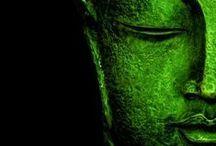 Some green in my life! / Vert couleur de l'esprit, permet les continuels recommencements de vie à travers les perpétuelles métamorphoses de l'âme une richesse jumelée à de nouveaux printemps intérieurs!