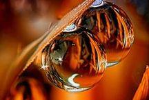 Orange~Mécanique / Orange synonyme de bonheur! Favorise les activités, le changement, le dynamisme, la générosité et la confiance en soi. Apporte énergie, enthousiasme, féminité, endurance et réussite!