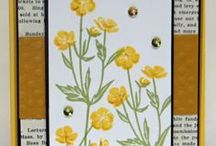 Cards - Wild About Flowers