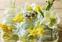 Glass Jar DIY / Looking for DIY fun for your empty Beech-Nut jars? Look no more!