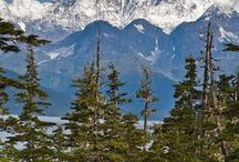 Alaska /    / by Pauline Elliott
