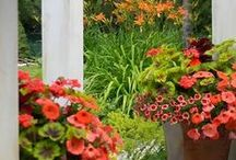 Creative Container Gardening / Inspiration for gardening with pots.