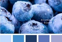 ༺♥༻ Blue ༺♥༻ / ᏰℓυƎ / by Barbara Greenhalgh