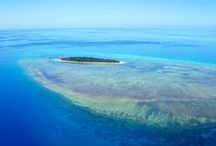 // Great Barrier Reef // Aerial View / The only way to really get a sense how how huge and amazing the GBR really is, is to fly over it!