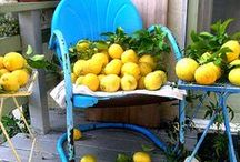When life gives you lemons / Lemony goodness - recipes, designs, quotes, all sorts of bright yellow inspiration!
