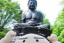 東京大仏に会ってきたよ / 奈良・鎌倉に次いで3番目に大きな東京大仏さん(東京都板橋区赤塚)のいる乗蓮寺の写真をご紹介するよ。  【参照ブログ】東京大仏に会ってきたよ http://sukedachikara.blogspot.jp/2013/07/blog-post_3.html