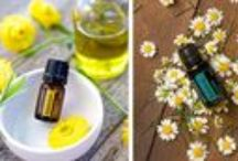 Essential Oil for Spring / Spring is just around the corner! Here are some helpful tips and recipes for using your Essential Oils